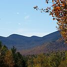 Lake Placid in autumn by hummingbirds