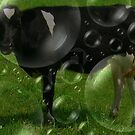 Black Bubbly Bull by Debbie Robbins