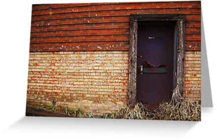 The Beer door by arawak