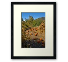 Pumpkin Highway Framed Print