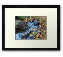 Cascades in the Autumn Framed Print