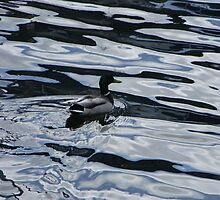 Floating on melted metal  by Lady  Dezine