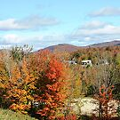 Fall Landscape by Esperanza Gallego