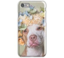 Flower Power, Lola iPhone Case/Skin
