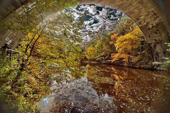 Echo Bridge by LudaNayvelt