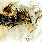 Calf by Cameron Hampton