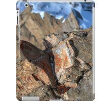 Winter on Kitzsteinhorn 87 iPad Case/Skin
