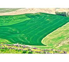 Farm Fields Photographic Print