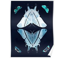 Exotic butterflies of the three parts of the world Pieter Cramer and Caspar Stoll 1782 V2 0052 Inverted Poster