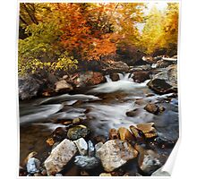 American Fork Canyon - Autumn River Poster