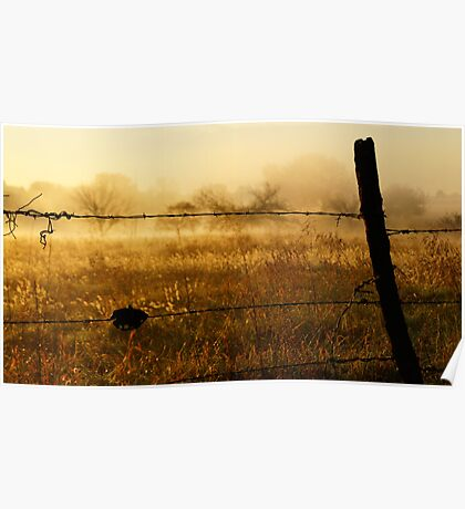 Sunrise fence in Wakarusa Poster