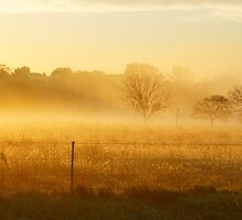 Sunrise fog at Wakarusa by agenttomcat