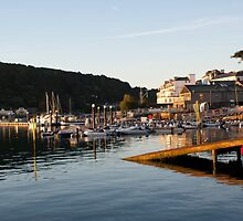 salcombe harbour by dave lapthorne