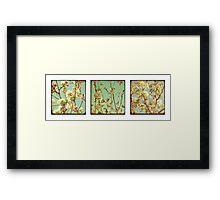 Spring Blossoms x3 Framed Print