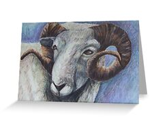 Study of Rams Head Greeting Card