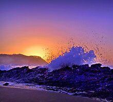 Splash by Elaine Short