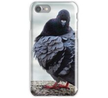 Pigeon at the marina iPhone Case/Skin