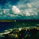 Stormy Day in Cala Ratjada by pahit