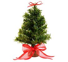 Christmas Tree & Red Bow Photographic Print