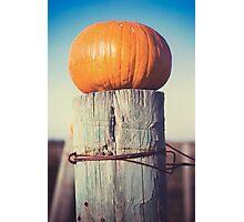 Pumpkin on a Fencepost Photographic Print