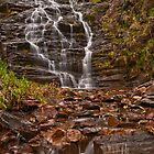 Margaret Falls by mspfoto