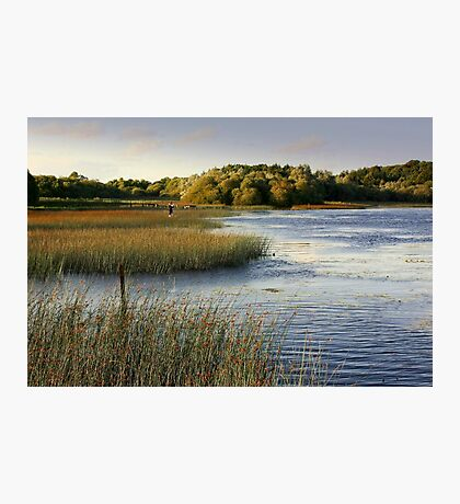 Brackley Lake - another view Photographic Print