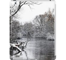 Winter On The Speed River iPad Case/Skin