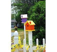 Multi-colored Bird Houses Photographic Print