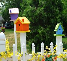 Multi-colored Bird Houses by chris-csfotobiz