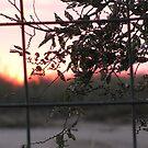 pretty sunrise by gabbielizzie