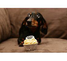 _Sausage Cupcake Photographic Print