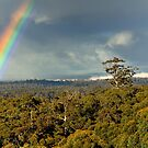 Gloucester Lookout Rainbow by Miles Moody