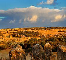 Pinnacles Landing by Miles Moody