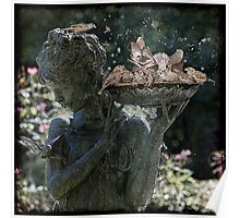 Bath Time For Sparrows Poster