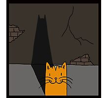 BATCAT Photographic Print