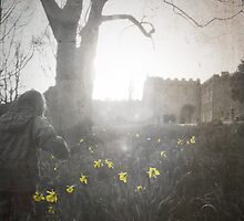 Daffodil Trail. by pixel8it