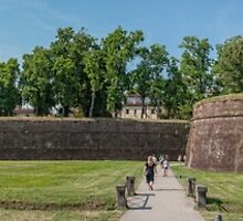 The Wall of Lucca by randymir