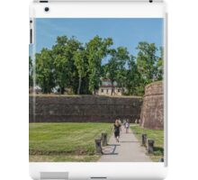The Wall of Lucca iPad Case/Skin