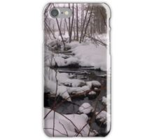 Winter woods iPhone Case/Skin