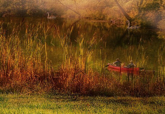 Dreams Along the East Branch by Pamela Phelps