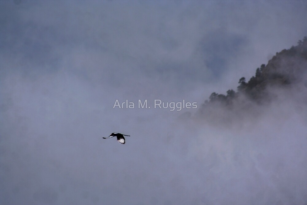 Messenger by Arla M. Ruggles