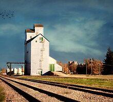 Beausejour Grain Elevator by Teresa Zieba