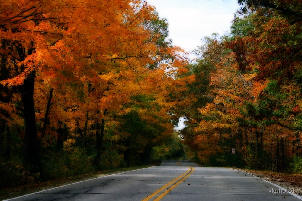 On A Country Road In Autumn by kkphoto1