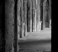 Abbey cloisters by Martyn Franklin