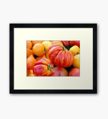 Tomatoes, Tomahtos! Framed Print