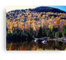 Glow of the Harvest Canvas Print