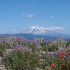 Mount Adams in late Summer by Dave Davis