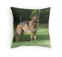 Come and Play! Throw Pillow
