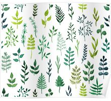 Green floral watercolor pattern Poster