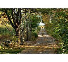 Autumn Road to the Ocean Photographic Print
